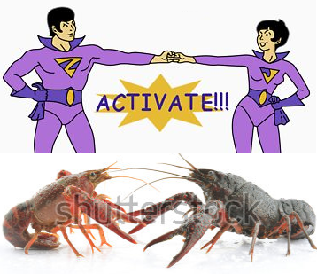 jan_jana_lobsters