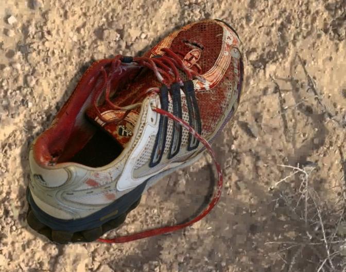 bloody_sneaker_2