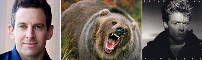 sam_bear