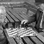 Plebs & Pawns