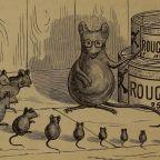 Smarter Rats
